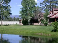 217 Pinon Causeway #3008, #Short Term, Pagosa Springs, CO 81147