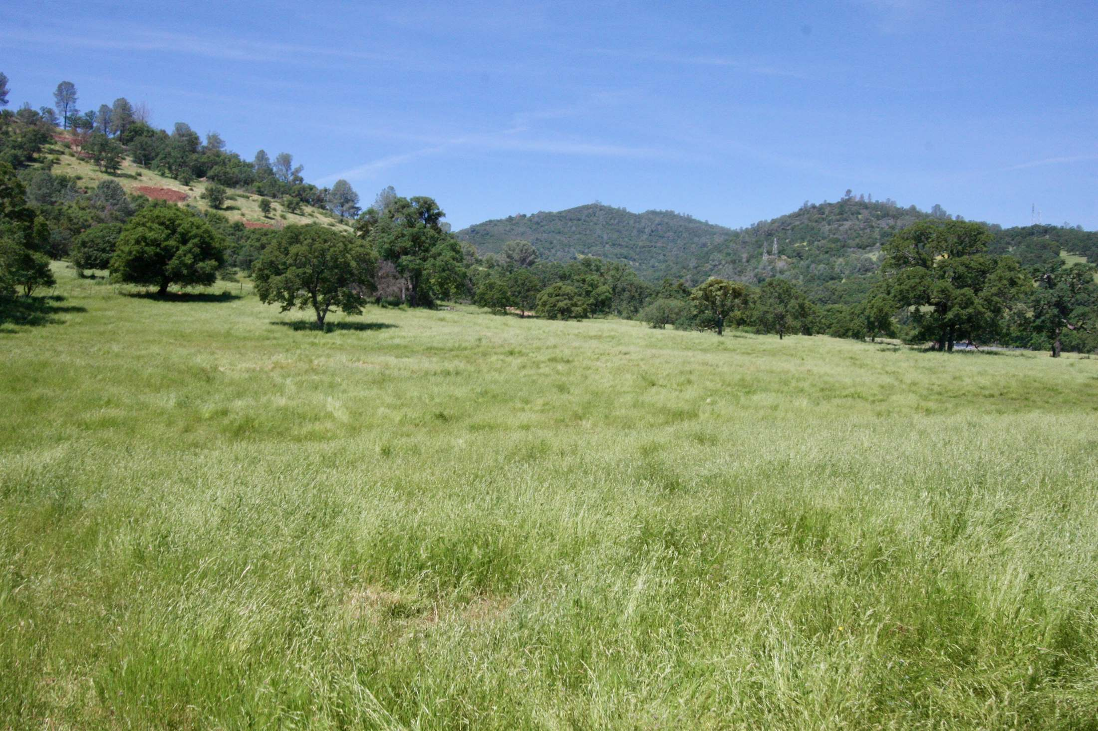 Brower Ranch, Angels Camp, CA 95222