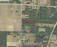 0 Griffith Mill Road, Holt, FL 32564