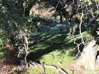 La Grange W of Rd, La Grange, CA 95329