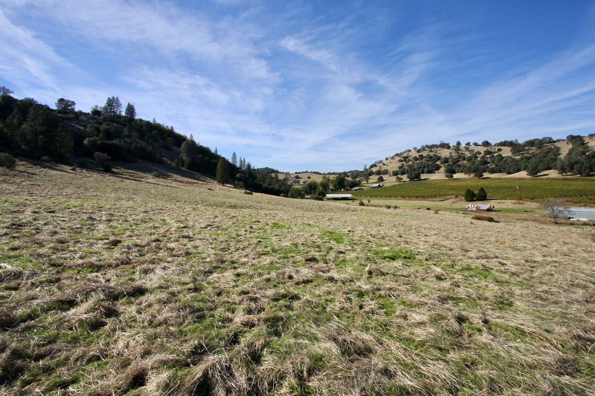 7449 Esmeralda Road, San Andreas, CA 95249