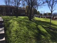 427 Kenbrook Circle, San Jose, CA 95111