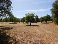 3195 Denton Lane, Clearlake, CA 95422