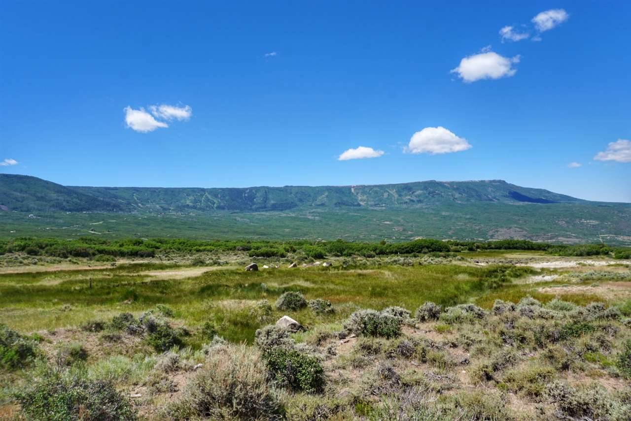 TBD Coon Creek Road, Mesa, CO 81643