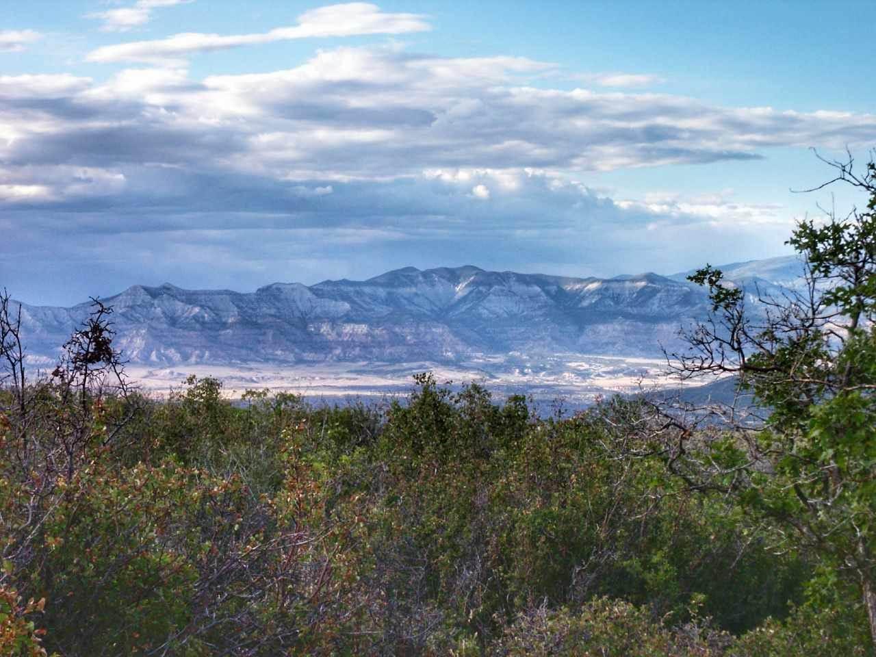 TBD Bull Basin Road, Mesa, CO 81643