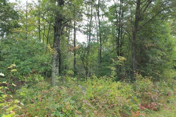 39.53 Acres LONESOME ROAD, Wisconsin Rapids, WI 54495
