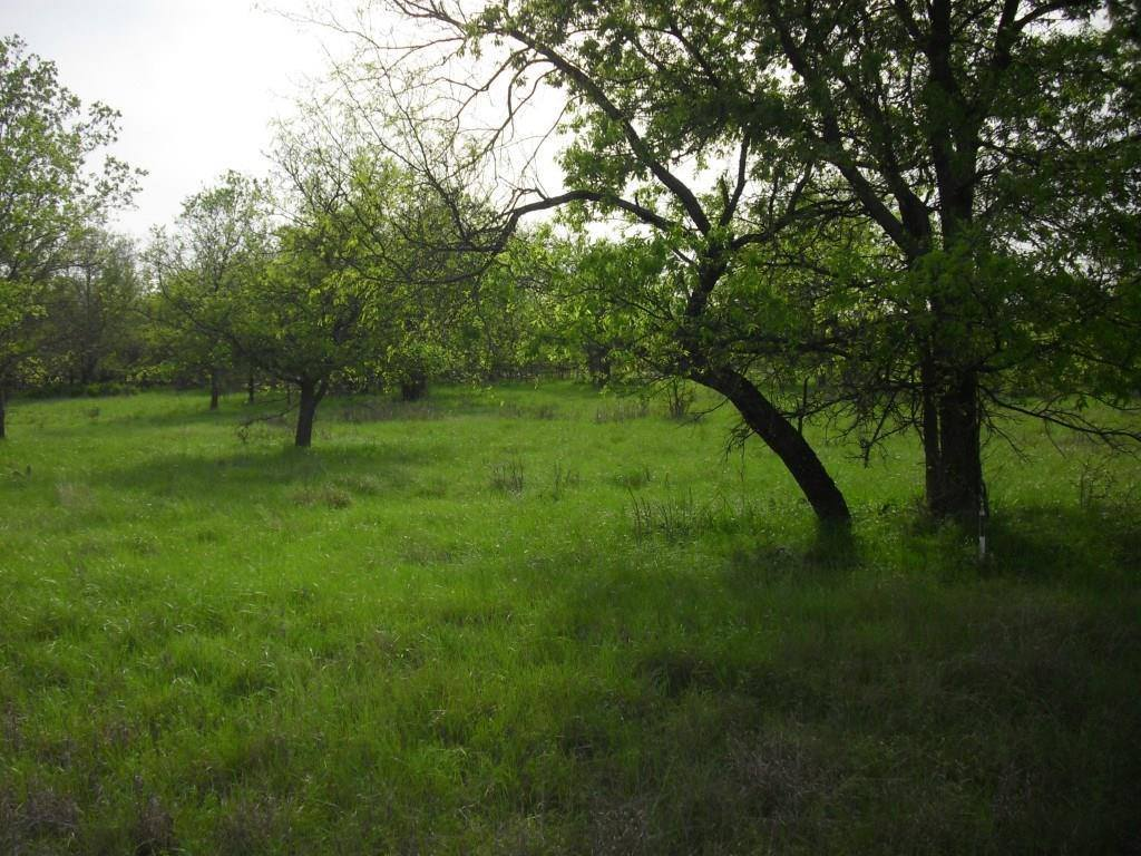 Lot 16 Graben Lane, Bridgeport, TX 76426