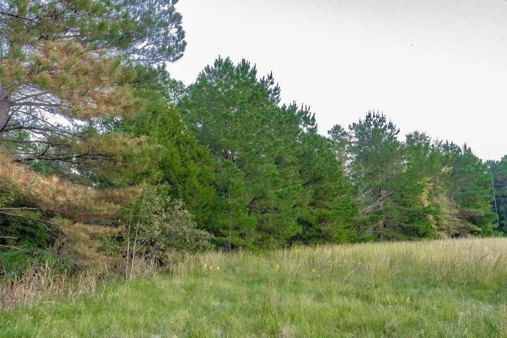 0 Cr 422 Pine Flat Rd, Oxford, MS 38655