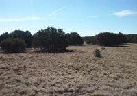 8493 Huggins Dr., White Mountain Lakes, AZ 85912