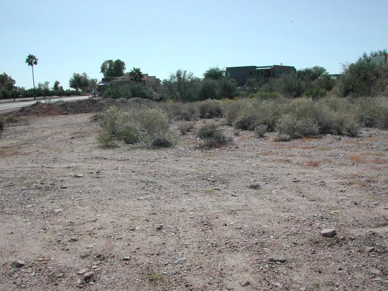 11230 N Saguaro Blvd Lot 14, Fountain Hills, AZ 85268