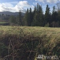 24031 Dolphin Lane, Lots 160,163,164,189,215,216,217,220,221, Mount Vernon, WA 98274
