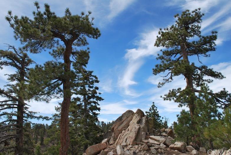 0 Vac/Big Pines Pav, Mt Waterman, CA 93544