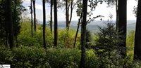 19 Rocky Gap, Landrum, SC 29356