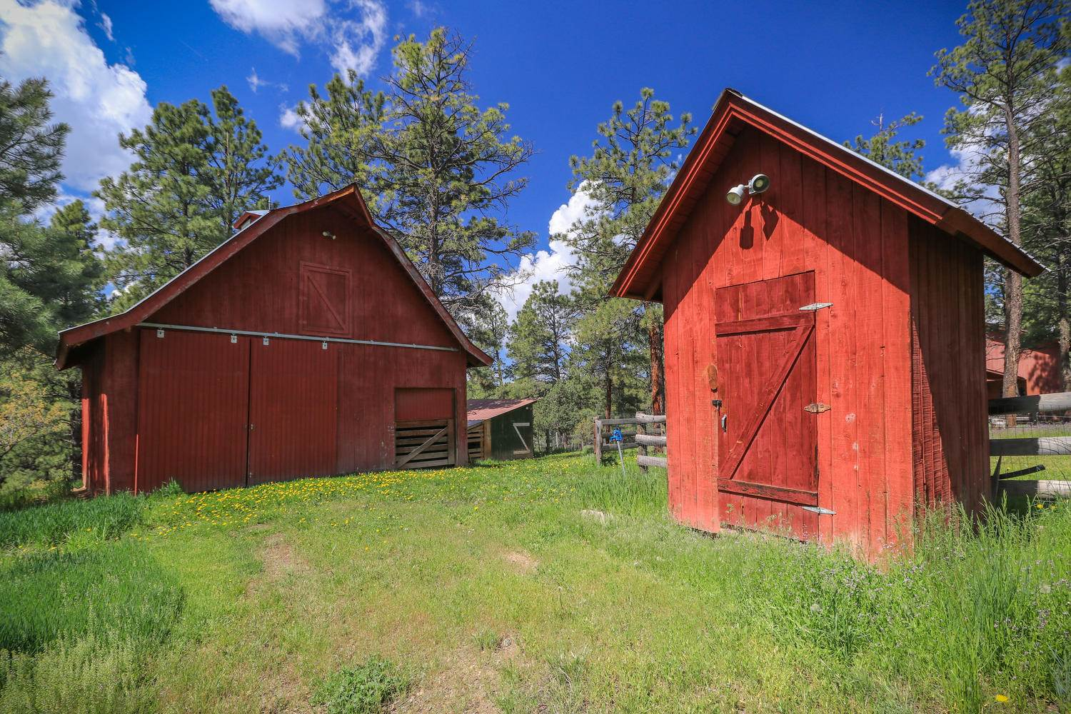 1495 Shenandoah Dr., Pagosa Springs, CO 81147