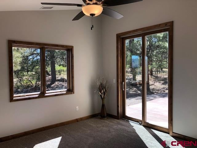 596 S Badger Trail, Ridgway, CO 81432