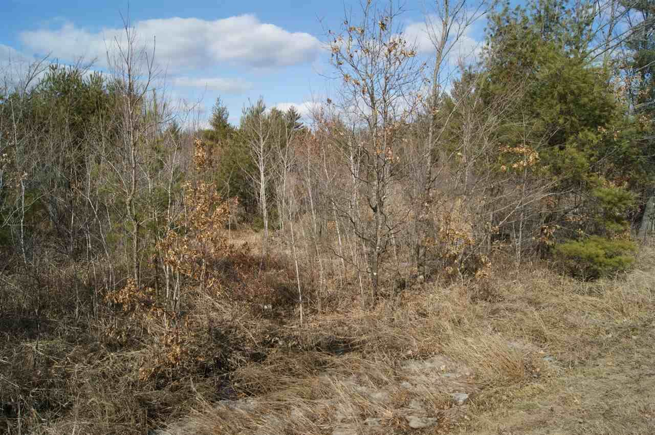 40 Acres KNUTES ROAD, Pittsville, WI 54466
