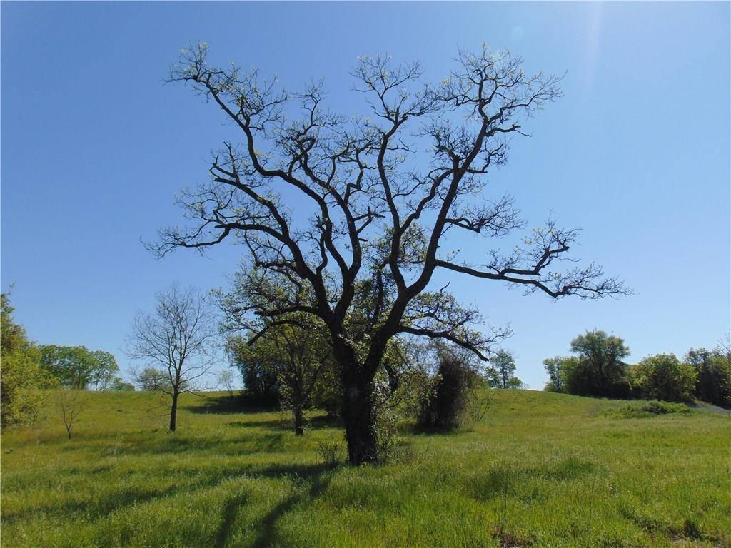 000 County Rd 319, Glen Rose, TX 76043