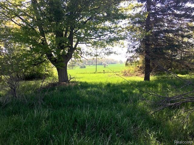 65855 Mound Rd, Washington, MI 48095