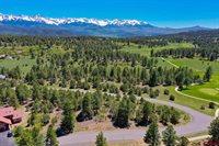 834 Marmot Drive, Ridgway, CO 81432
