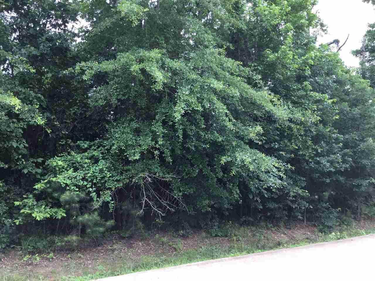 Lot 16 Cherokee Trail, Texarkana, TX 75501
