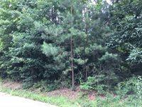 Lot 15 Cherokee Trail, Texarkana, TX 75501