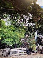 1362 Lower Main St, Wailuku, HI 96793