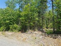 Lot 2 Black Bear Lane, Greenville, ME 04441