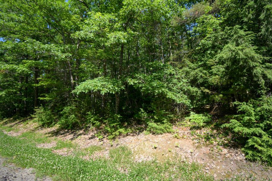 Lot 6 Swan Lake Ave, Swanville, ME 04915