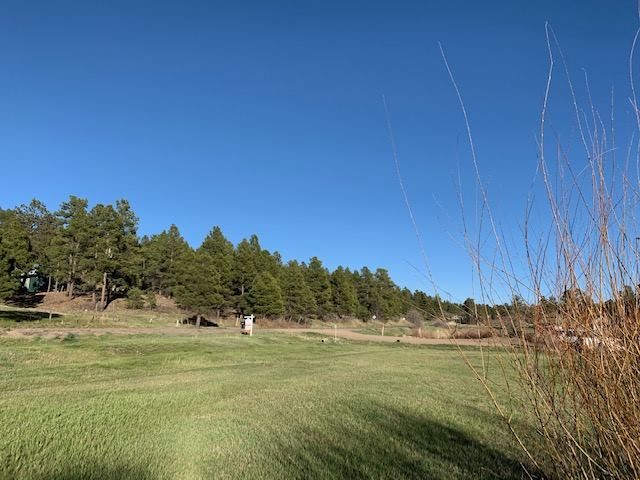1736 County Road 600, Pagosa Springs, CO 81147
