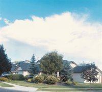 2004 West Cedar Grove Street, Meridian, ID 83646