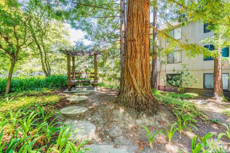 4339 Shelter Creek Lane, San Bruno, CA 94066