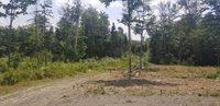 TBD Black Bear Lane, Greenville, ME 04441