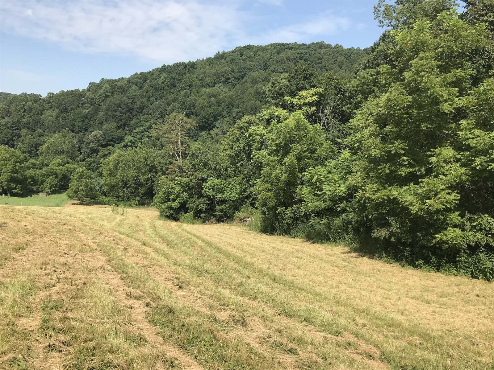 TBD Collins Cove Road, Ivanhoe, VA 24350