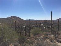 42524 N Fleming Springs Rd, Cave Creek, AZ 85331