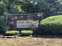 Lot 14 Sub Plat 1 Oscie-Ora, Webb City, MO 64870