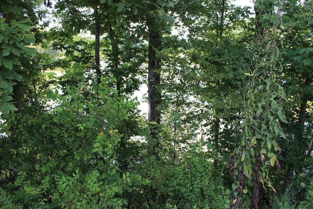 6011 Pope Crowder Road, Pope, MS 38658