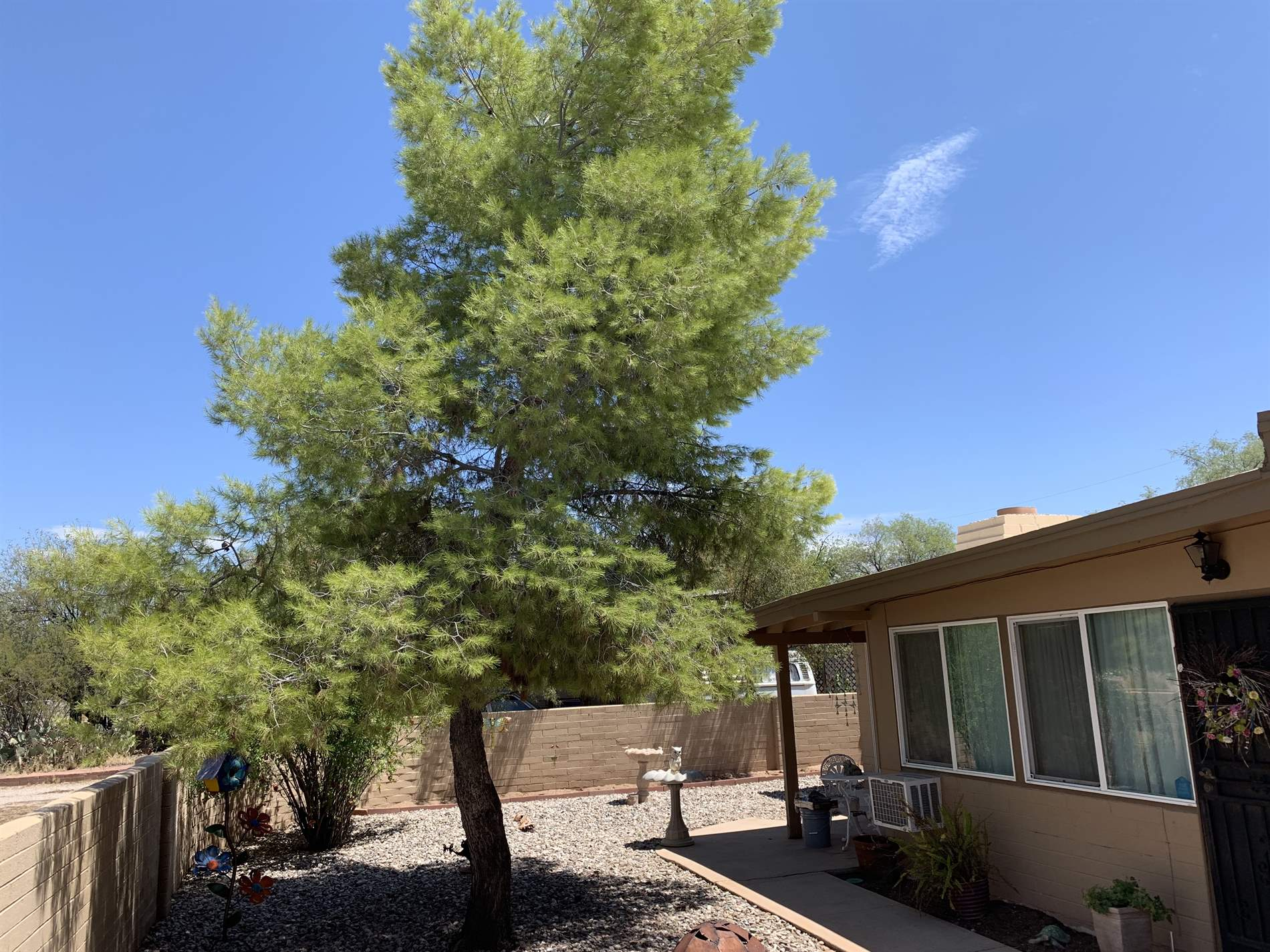 5932 E Waverly, Tucson, AZ 85712