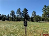 123 HUMMINGBIRD Trail, Ridgway, CO 81432