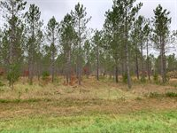 xxx Cathedral Pines Dr Tract A, Sturgeon Lake, MN 55783