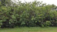 432 SW Ridgecrest Drive, Port Saint Lucie, FL 34953