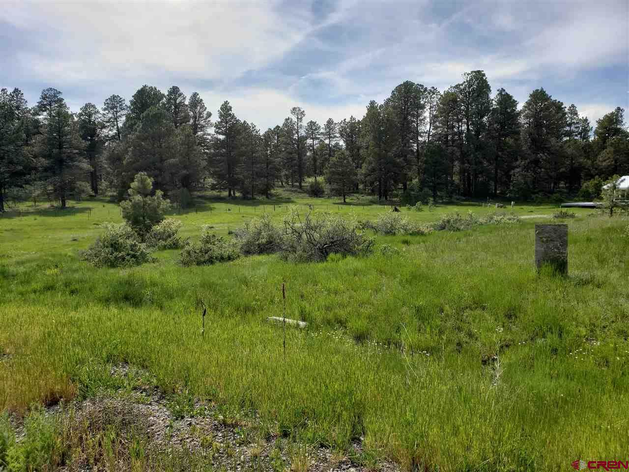 43 Marble Ct, Pagosa Springs, CO 81147
