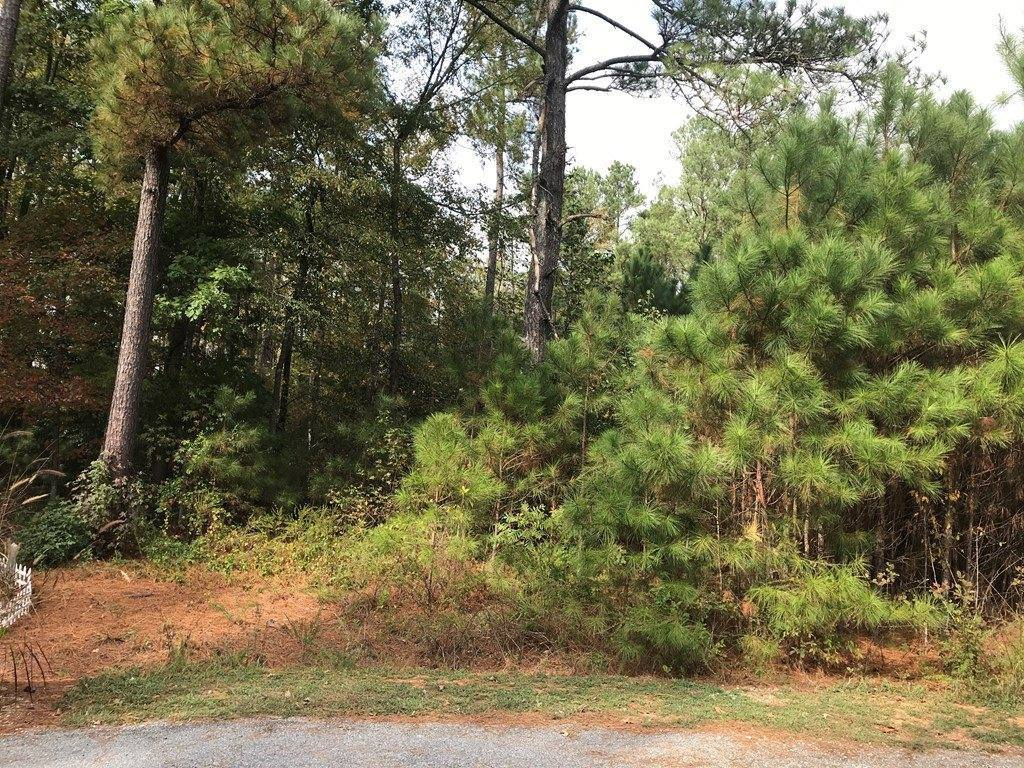 Lot 26-E Wagon Drive, Bracey, VA 23919