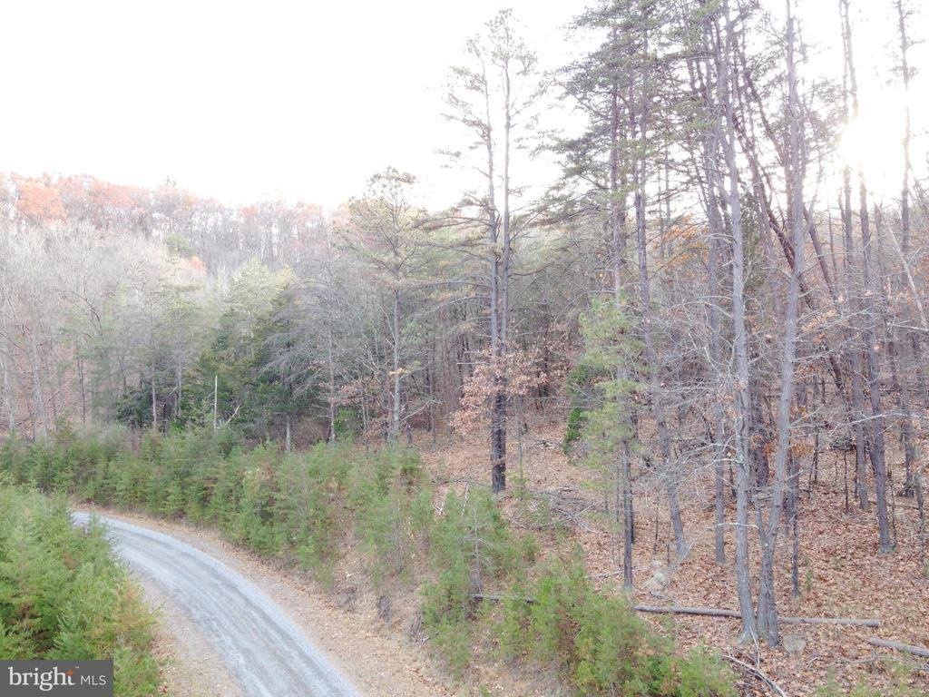 Lot 4 Hannah Court, Wardensville, WV 26851