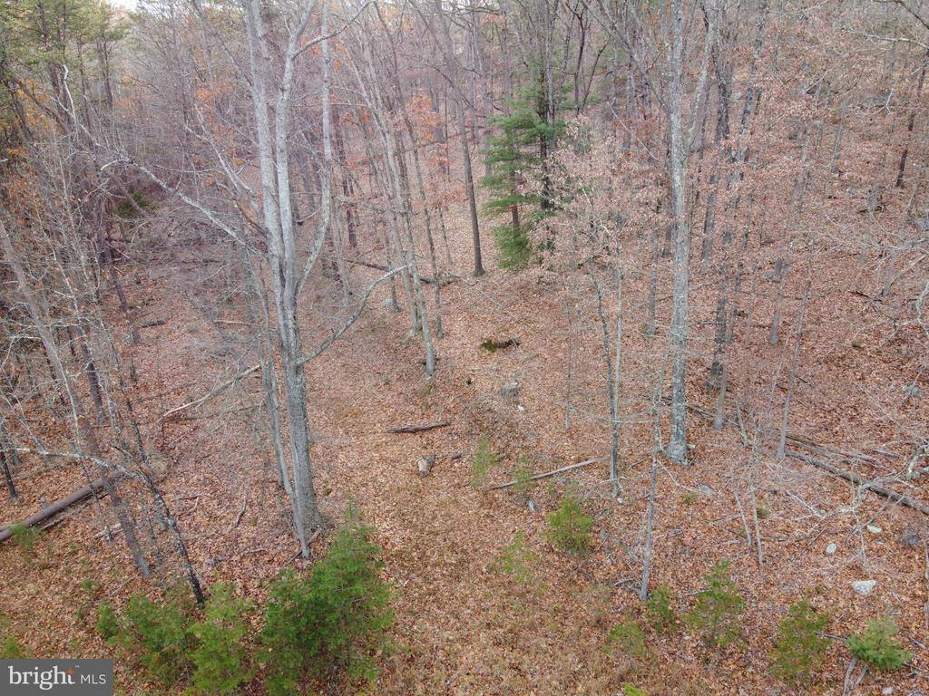 Lot 19 Hannah Court, Wardensville, WV 26851