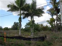433 NW 5th Ter, Cape Coral, FL 33993