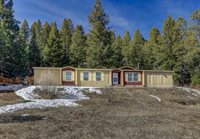 187 WEASEL Drive, Pagosa Springs, CO 81147
