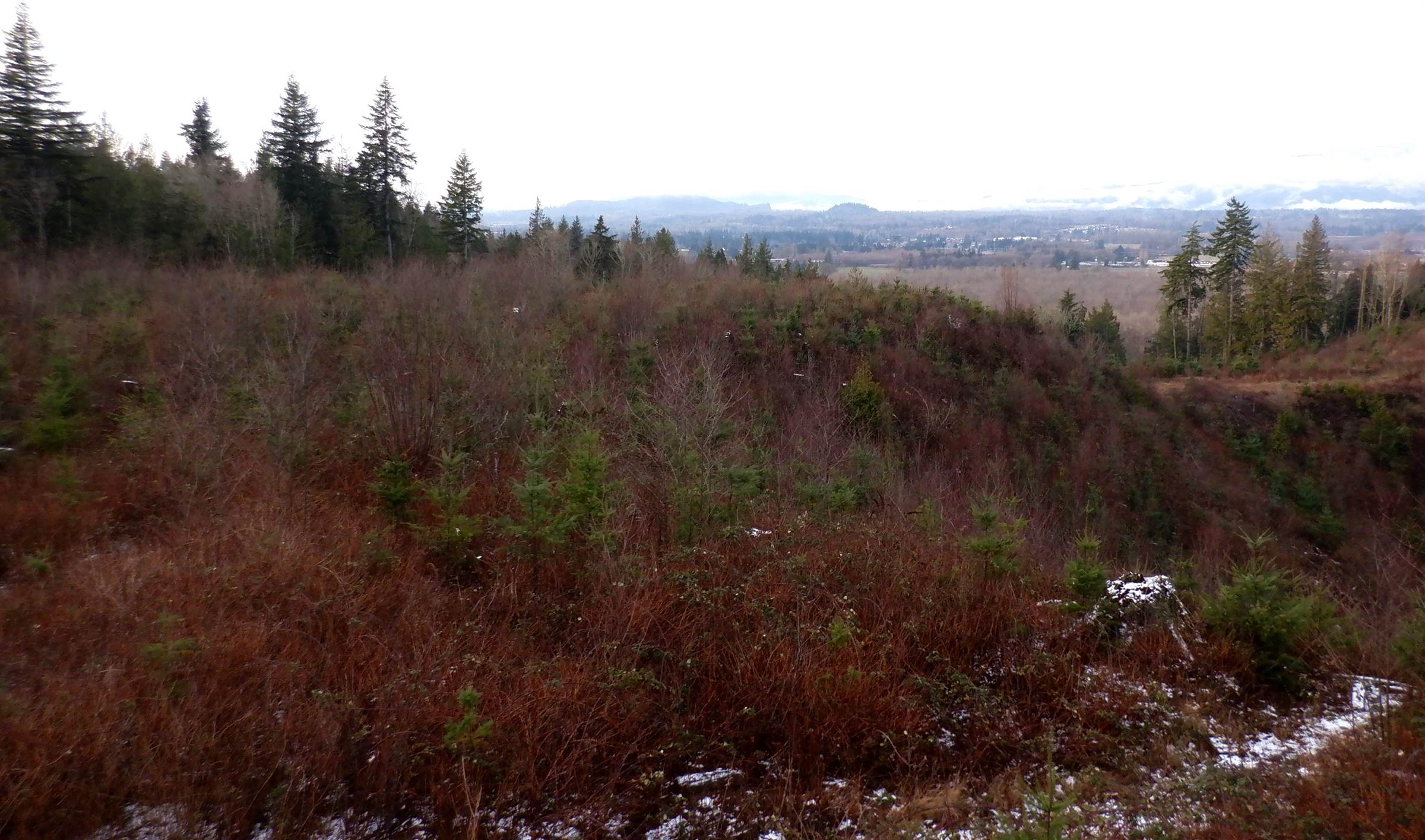 40541 Panorama Place, Sedro Woolley, WA 98284