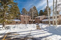 145 Davis Cup #4041, #Short Term, Pagosa Springs, CO 81147