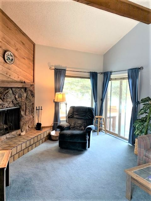 199 Davis Cup Drive, #4063, Pagosa Springs, CO 81147
