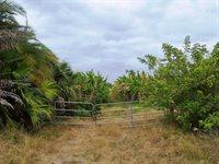 22801 SW Arrowroot Road, Indiantown, FL 34956